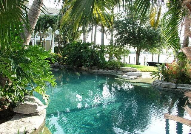 Pool Design Tropical