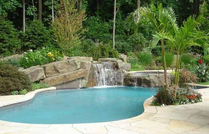 Pool Fancy Aquatic Backyard Detail Swimming False