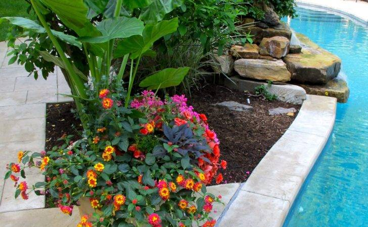 Pool Pots Around Waterfall Gardening Layout Misc