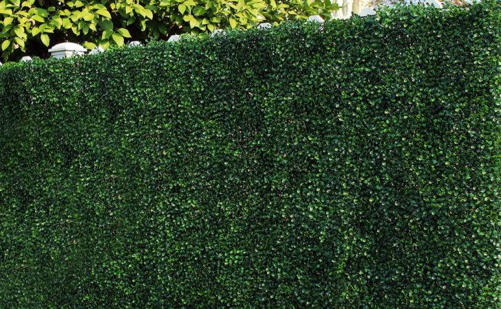 Popular Artificial Grass Fence Buy Cheap Lots