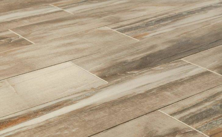 Porcelain Tiles Italian Woods Petrified Wood Angles Tile
