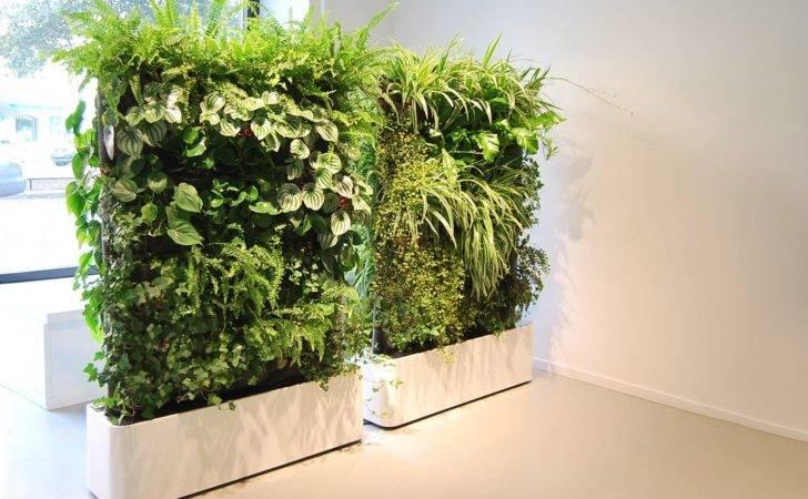 Portfolio Interior Plants Indoor Landscapes