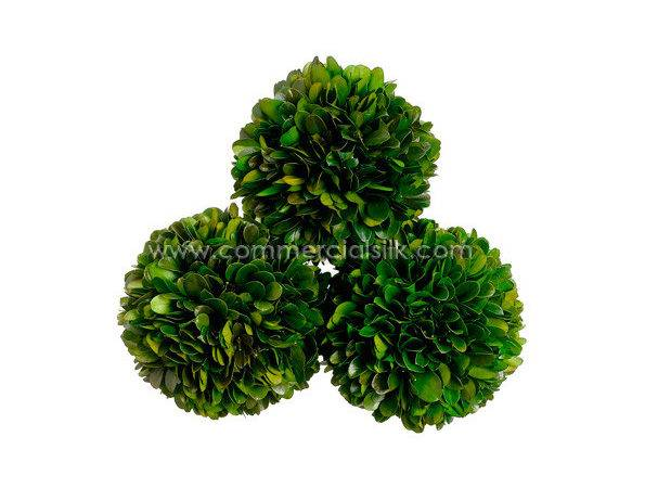 Preserved Boxwood Ball Commercial Silk Int
