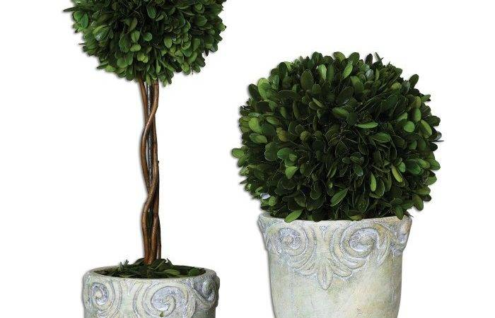 Preserved Boxwood Ball Topiaries Set Uttermost
