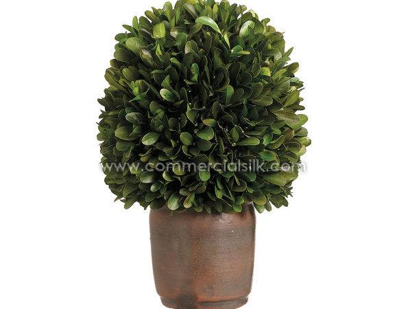 Preserved Topiaries Boxwood Ball Commercial Silk Int