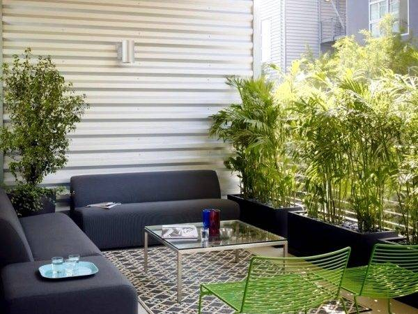 Privacy Balcony Plants Bamboo Mats Interior Design