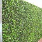 Privacy Hedges Youtube
