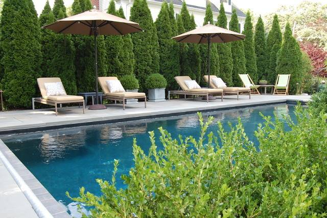 Privacy Screening Traditional Pool Other Metro Cording