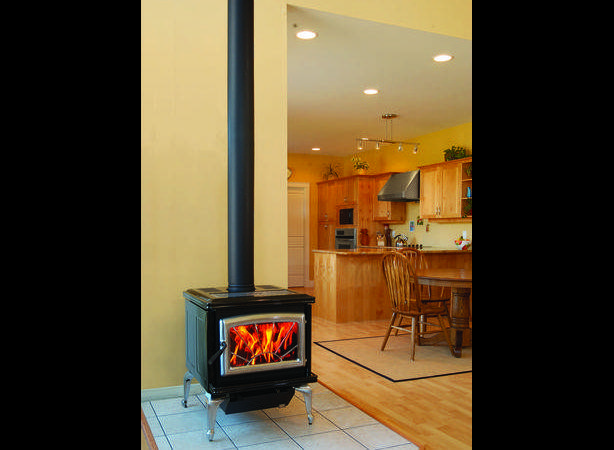 Propane Freestanding Fireplace Stove Pacific Energy Classic Outside