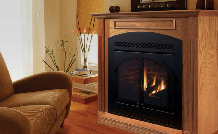 Propane Natural Gas Fireplaces Standing Stoves Inserts
