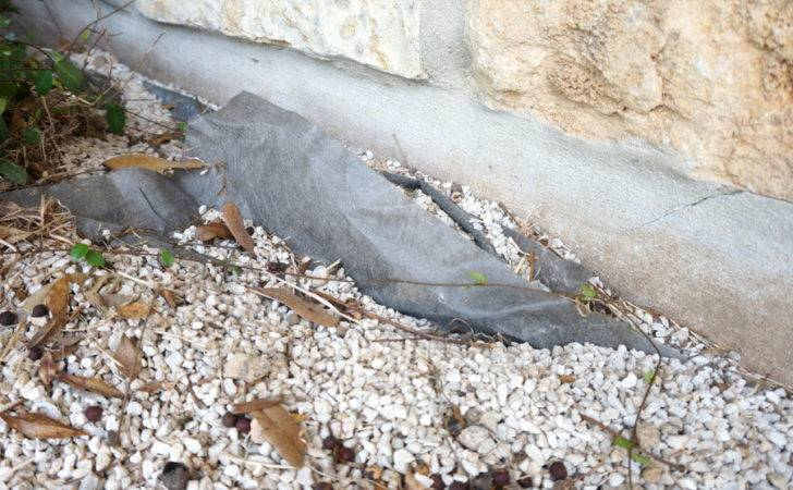 Pros Cons Preventing Weeds Landscape Fabric