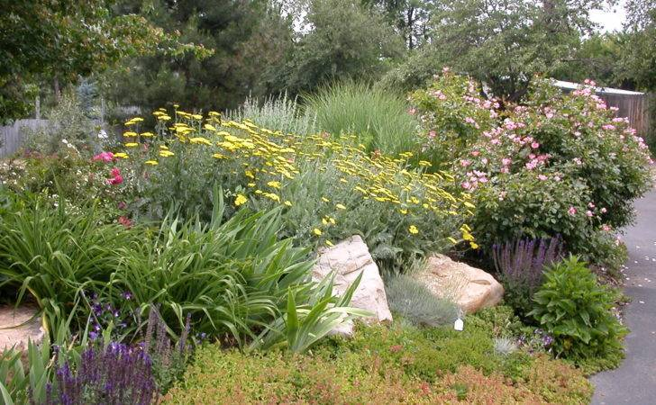 Provides Wildlife Habitat Native Plants Shrubs Trees