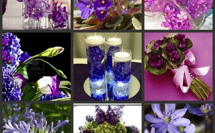 Purple Flowers Types Names