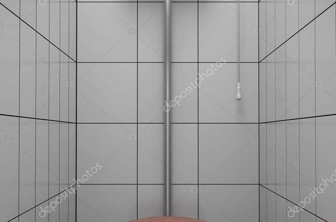 Retro Style Toilet Gray Tiles Tiler