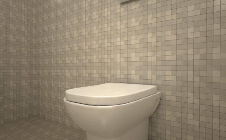 Retro Toilet Bowl Cam