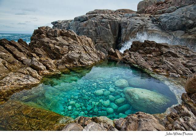 Rock Pool Flickr Sharing