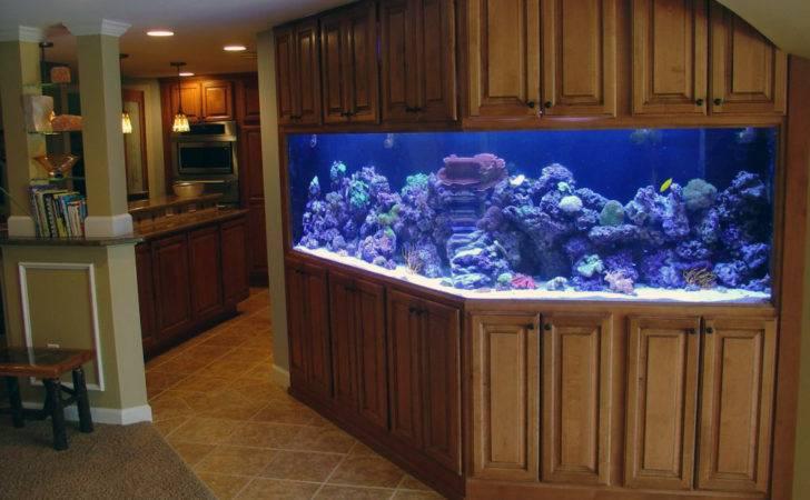 Safely Move Saltwater Aquarium Movers Quotes
