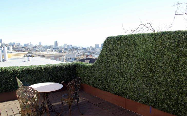 San Francisco Artificial Boxwood Hedge Walls Panels Pinterest