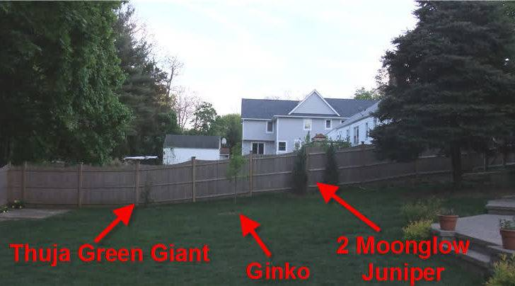 Screen Ideas Block Neighbor New Second Story