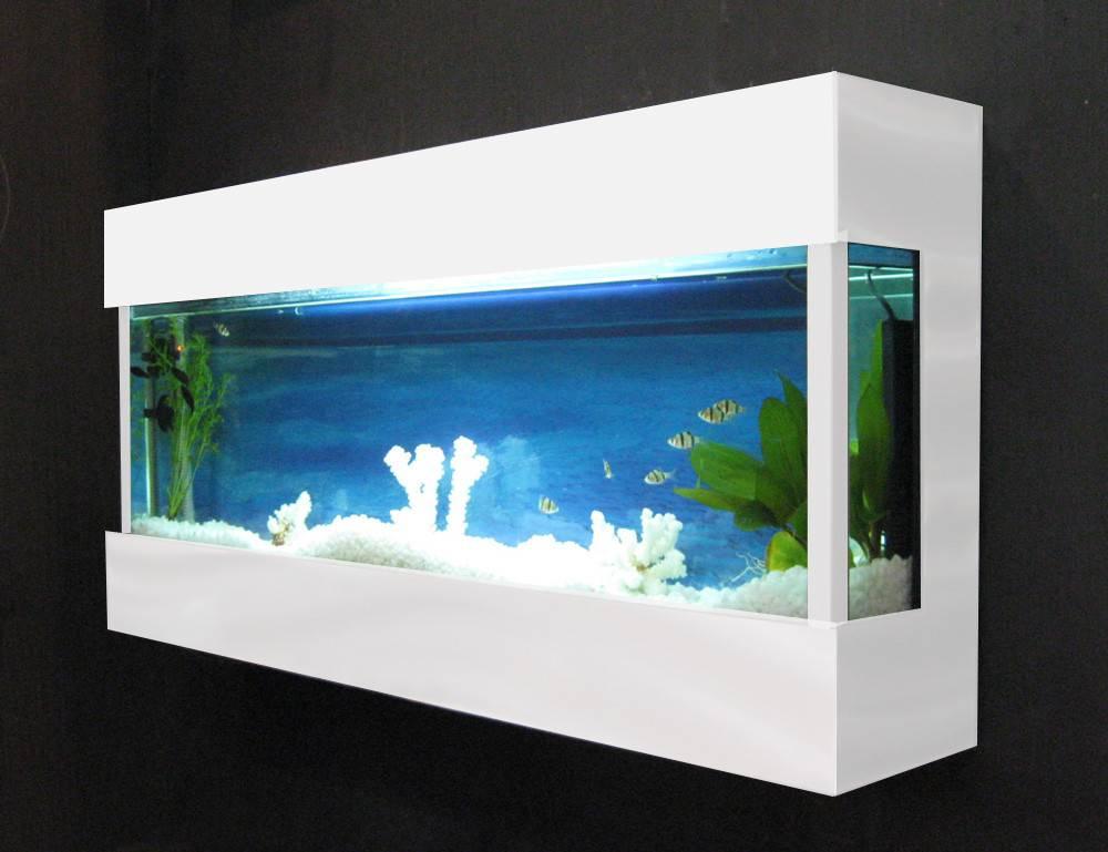 Search Terms Fish Tanks Tank Funny Aquarium Design