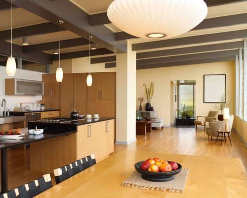 Seattle Mid Century Modern Home Design Ideas Remodel