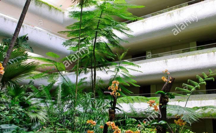 Shangri Hotel Lobby Garden Wing Star Beautiful