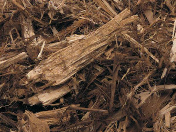 Shredded White Cedar Widely Available Light Colored Mulch Looks