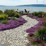 Side Garden Modern Landscape Seattle Dan Nelson Designs