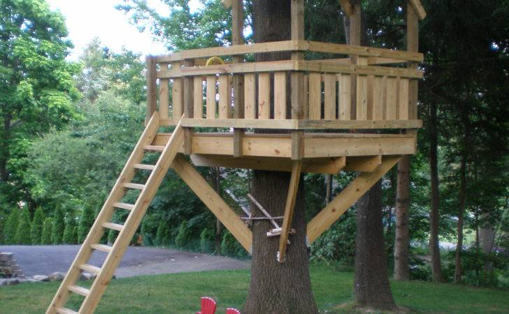 Simple Tree House Design Plans Well