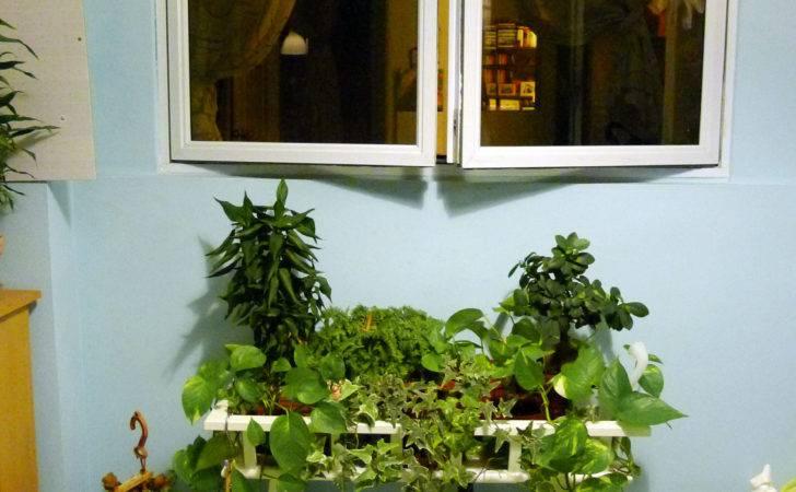 Singapore Hdb Vertical Vegetable Garden Philosophy Bedroom