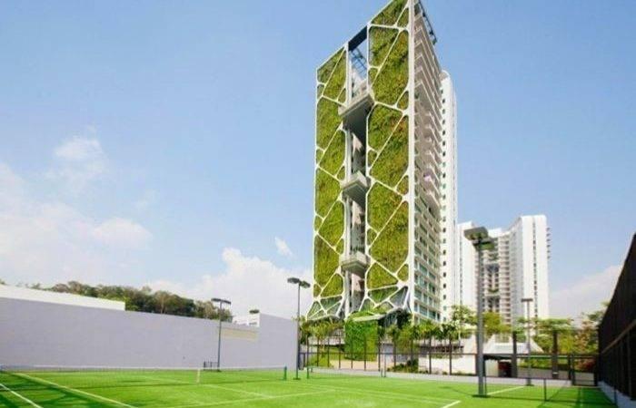 Singapore Tree House Monday Sets