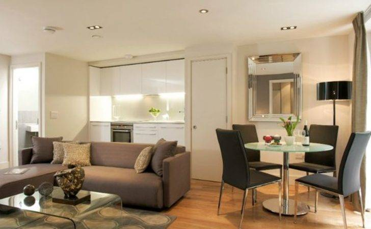 Small Living Room Layout Combined Chic Dining Design Using
