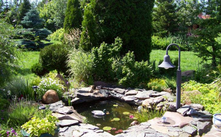 Small Pond Landscaping Ideas Pool Design