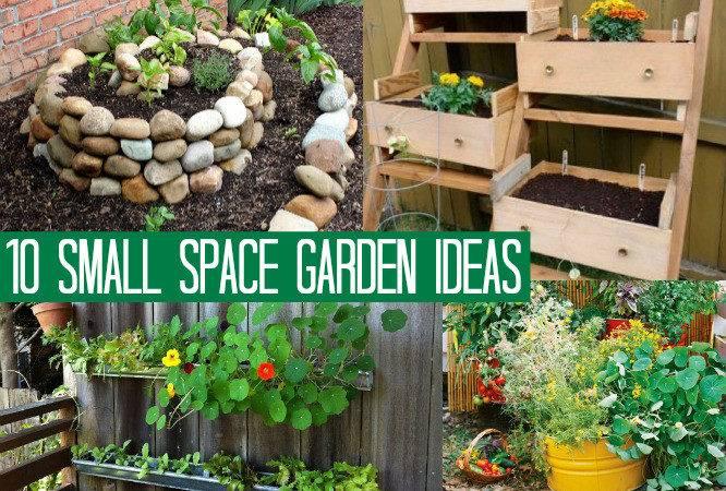 Small Space Garden Ideas Creative