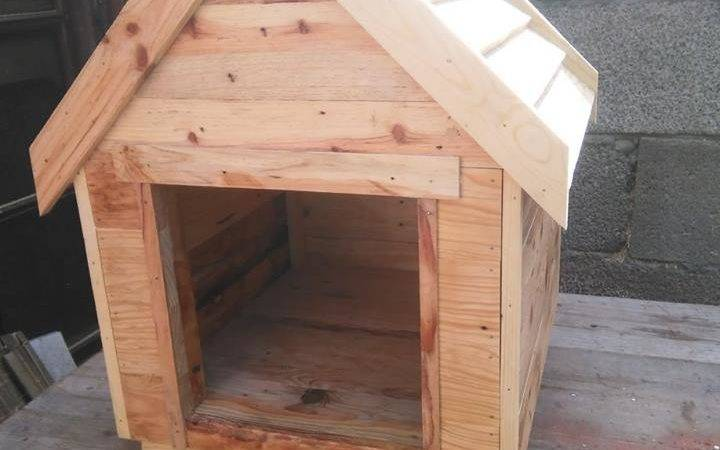 Solid Wooden Pallet Dog House