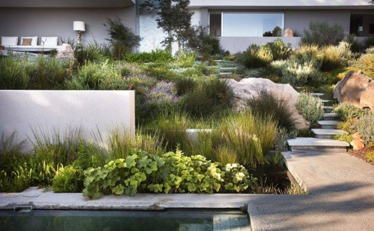 South African Garden Designs Here Landscaping Ideas