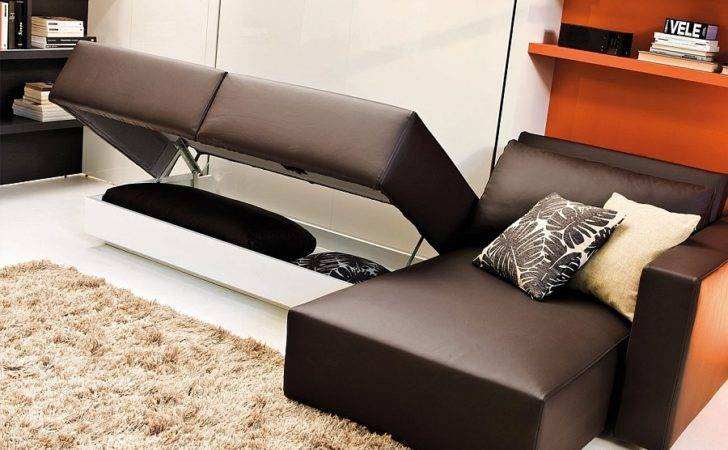 Space Conscious Murphy Bed Couch System Perfect Modern