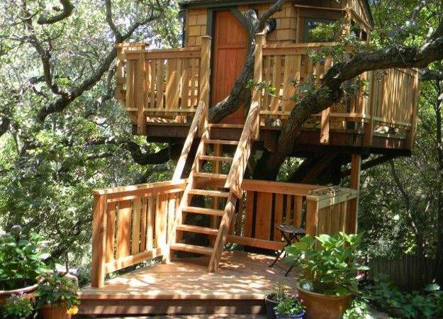 Spectacular Tree House Designs Offering Romantic Intimate Living