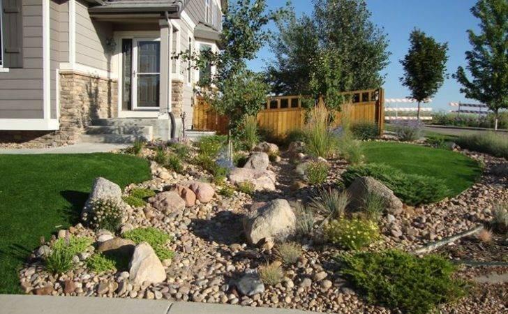 Springs Colorado Artificial Turf Sod Xeriscape Landscaping Ideas