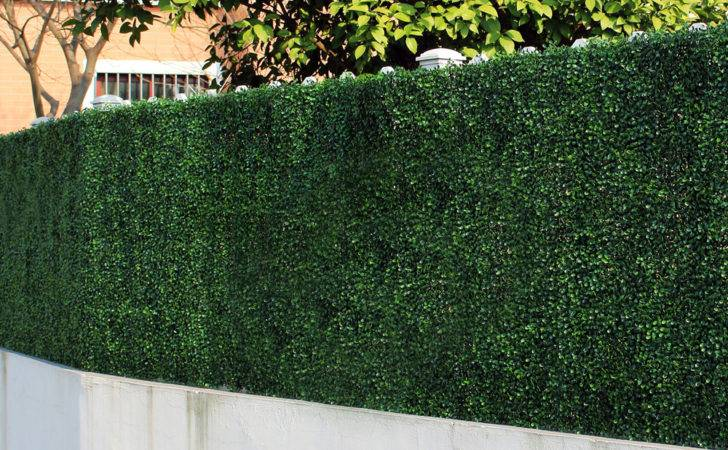 Sqm Artificial Boxwood Hedge Panels Plastic Barrier Fence Cover Mat