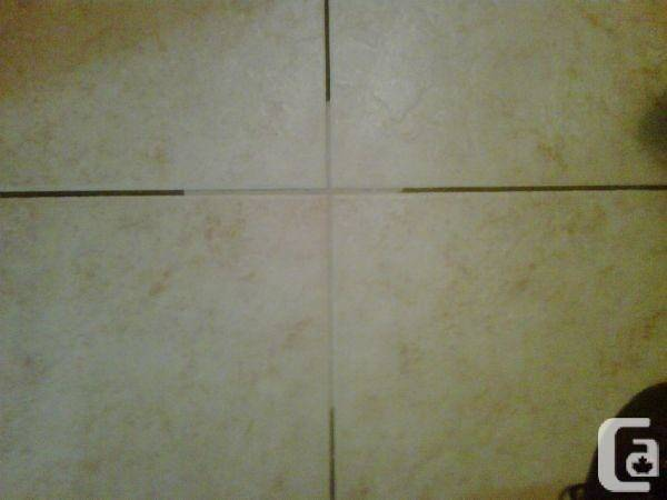 Steam Cleaning Carpet Grout Sale Toronto Ontario