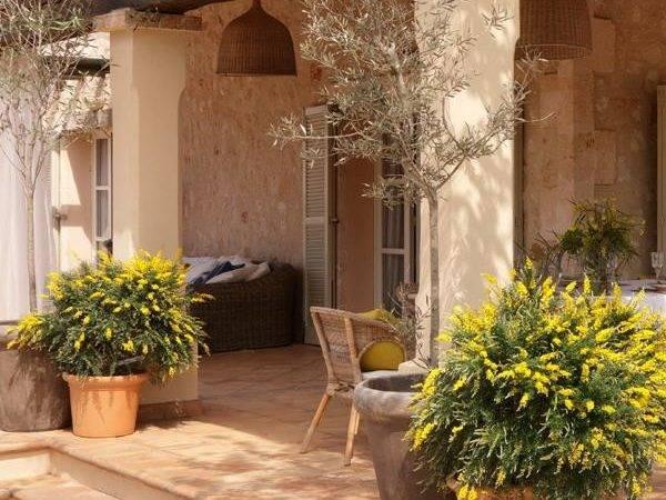 Stone Patio Ideas Outdoor Furniture Decorating Plants