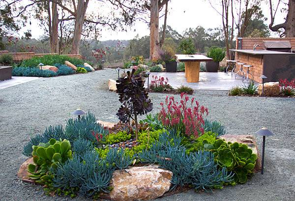 Striking Color Xeriscaped Yard