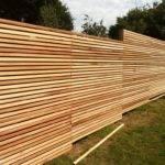 Study Western Red Cedar Slatted Screens Create Modern City Garden