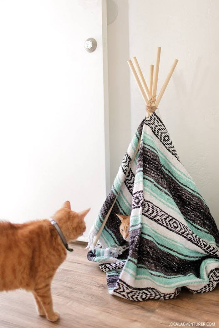 Stylish Diy Projects Cat Lovers Styletails
