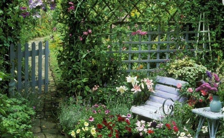 Summer Patio Blue Chair Arch Clematis Perle Azure