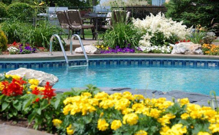 Sunny Pool Party Decorations Summer Add
