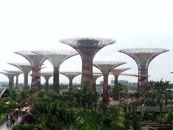 Supertrees Taking Root Singapore Waterfront Video Treehugger