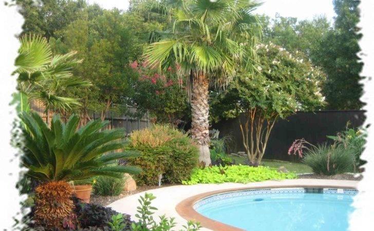 Swimming Pool Landscaping Ideas Backyard Resorts