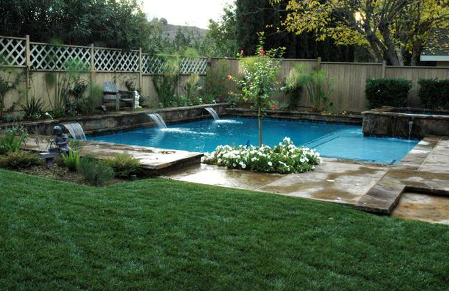 Swimming Pool Plantings